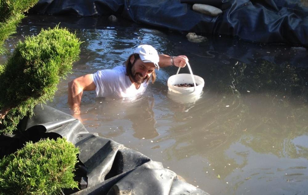 Lavasteine und Muscheln werden auf Pflanzrand und Grund verteilt